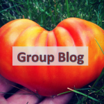 Group Blog